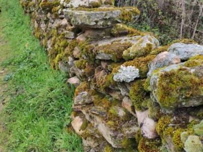 Frente Agua-Yacimiento Arqueológico Guerra Civil Española; cañon del rio guadalix cañon del guadalix
